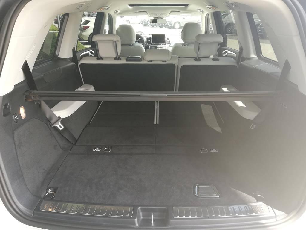 Mercedes GLS (WFDN)